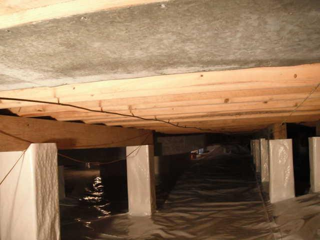Crawlspace Troubles in Dorset, ON