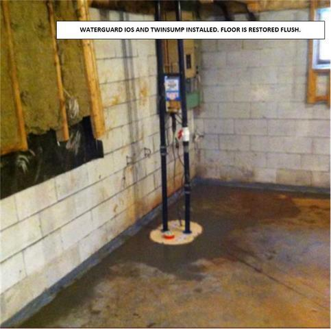Replaced Sump Pump to Save Flooded Basement in Belle Ewart, ON