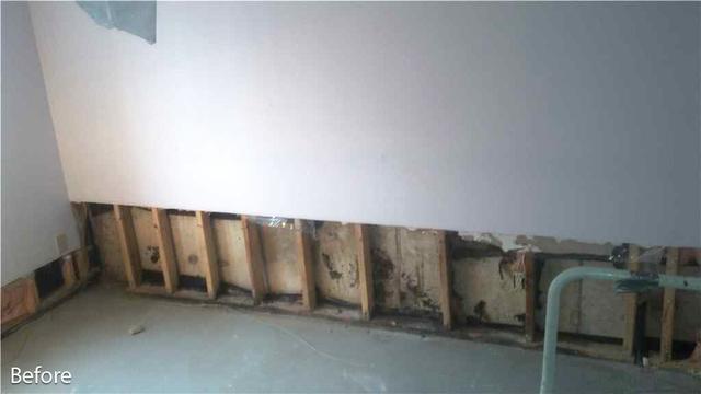 Complete Waterproofing for Brampton, Ontario Basement