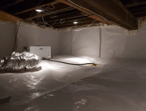 Damp Crawlspace Puts Off Basement Renovation in Toronto, Ontario