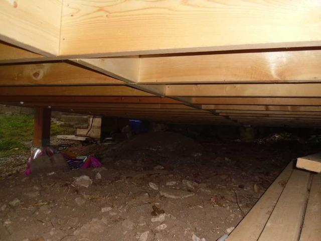 Unique Open Crawl Space Encapsulated in Bridgenorth, Ontario