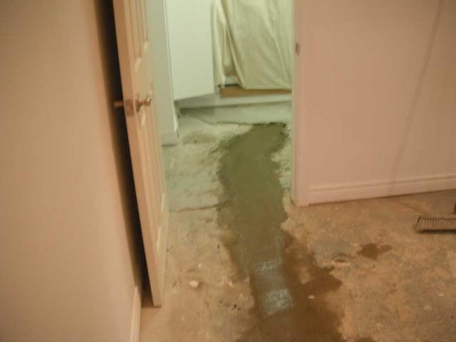 Leaking Floor in Georgetown, Ontario