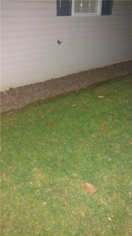 Basement Gets Egress Windows in Fleetwood, PA