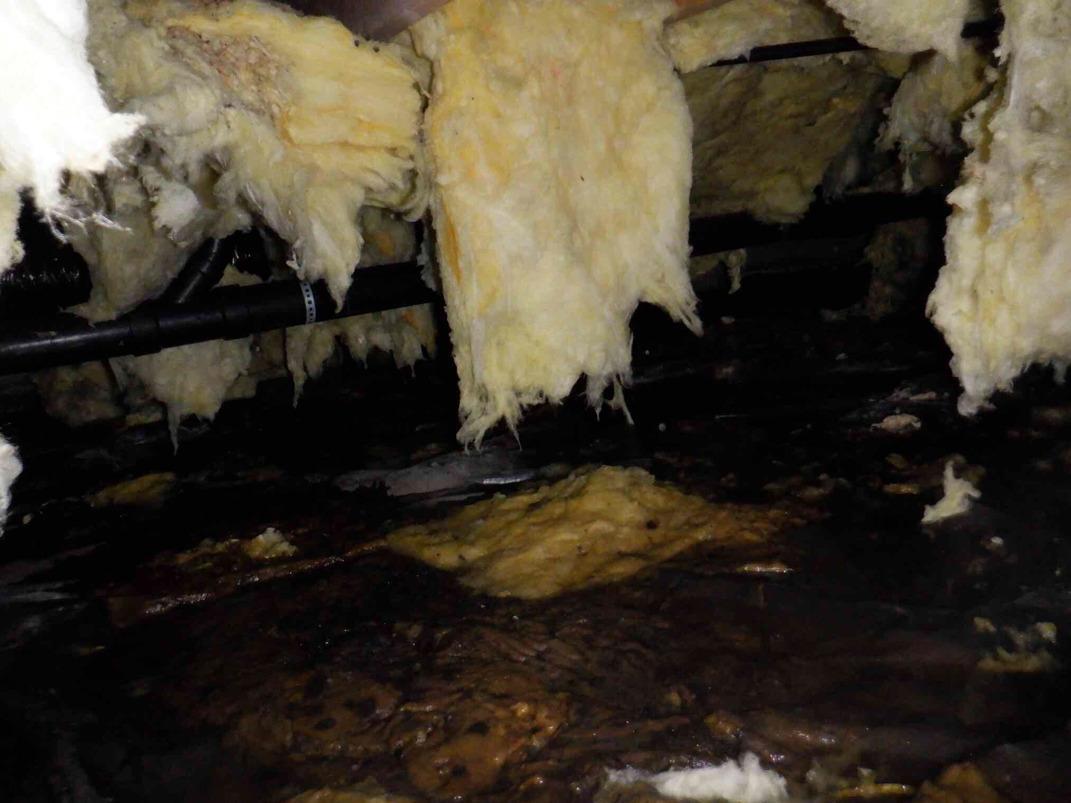 Repairing Water in Crawl Space in Brier, WA - Before Photo