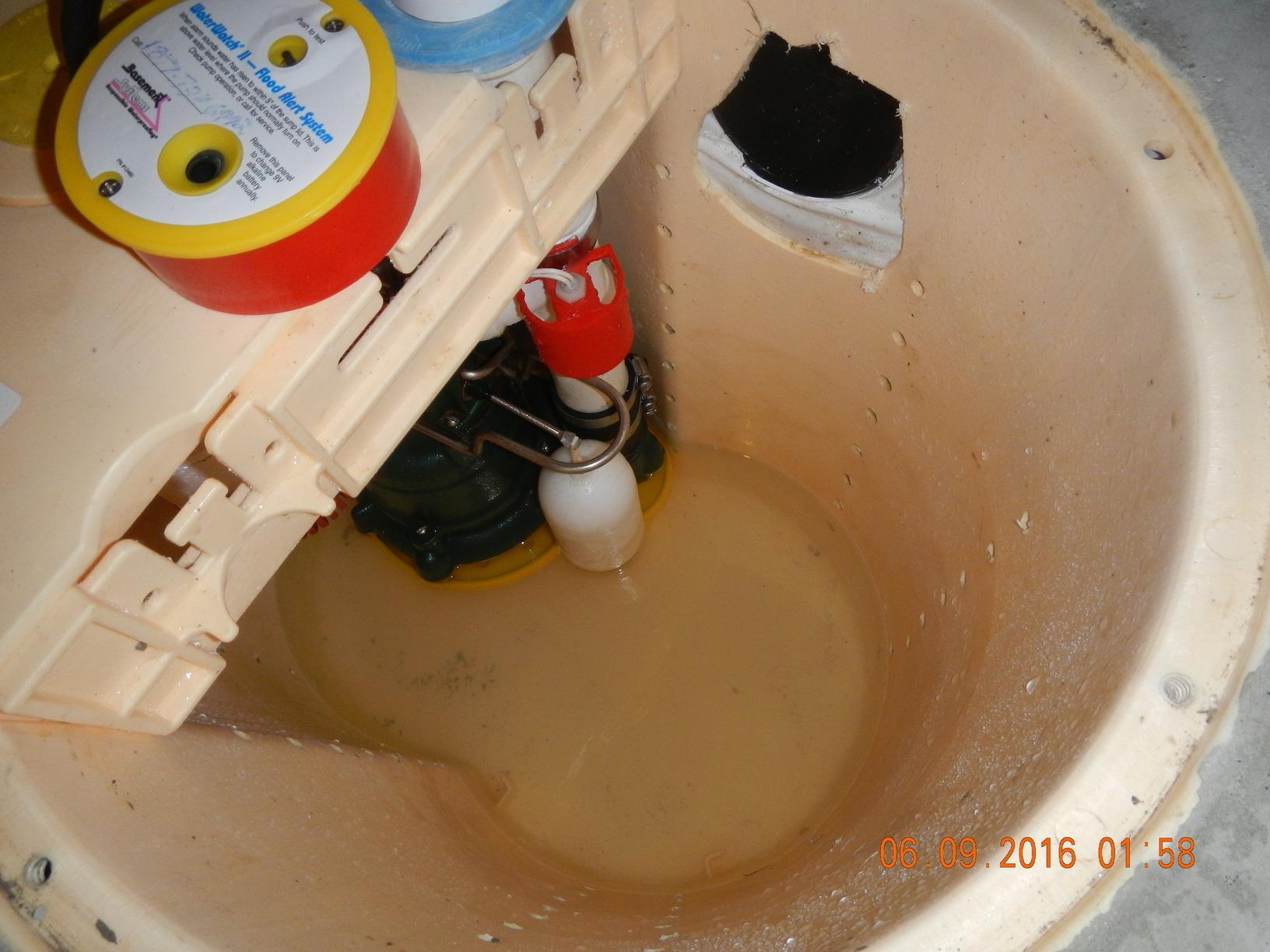 Annual Sump Pump Service in Anacortes Crawl Space - After Photo