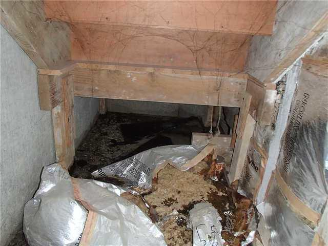 Basement Repair in Sedro Woolley, WA