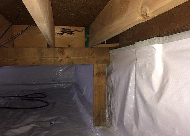 Repairing a Dirty, Wet Crawlspace in Everett, WA