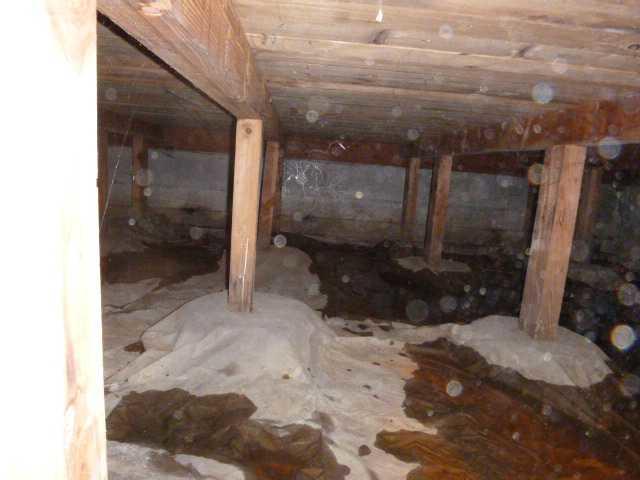 Waterproofing Crawl Space in Mountlake Terrace, WA