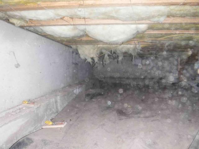 Crawl Space Waterproofing in Ferndale, WA