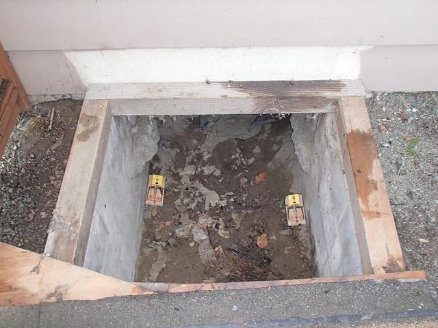 Crawl Space Access in Burlington, WA