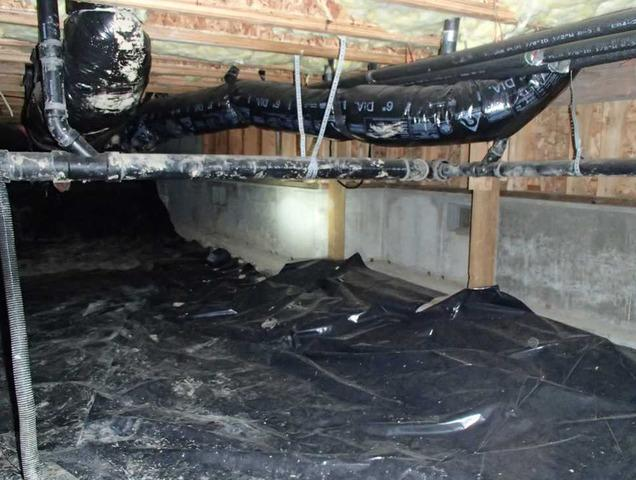 Damp Crawl Space Clean Out in Bellingham, WA
