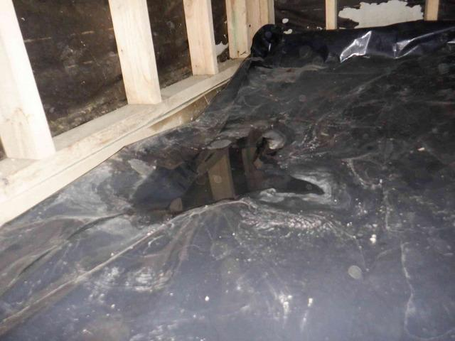 Fixing Water Above Vapor Barrier in Bellingham, WA Crawl Space