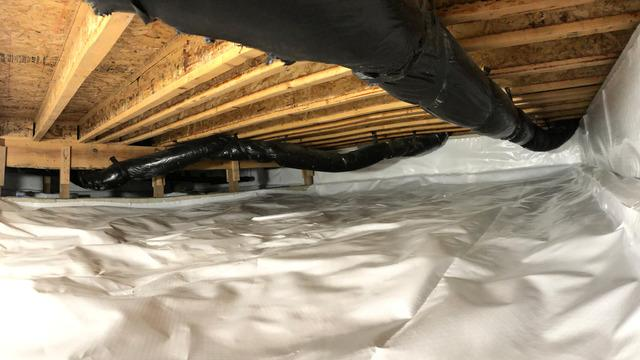 Before & After Crawl Space in Oak Harbor, WA