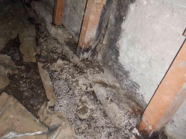Water Damage in Mountlake Terrace, WA Crawl Space