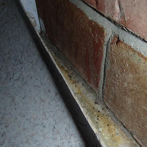 Daylight Basement Leak in Snohomish, WA