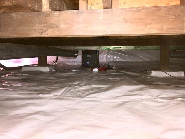 Rodents and Mud in Everett Crawl Space