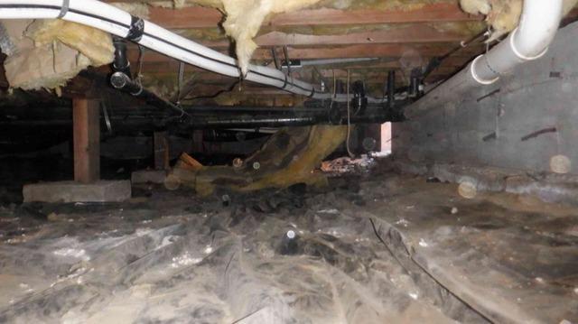 Musty Odors and Repair in Arlington, WA Crawlspace