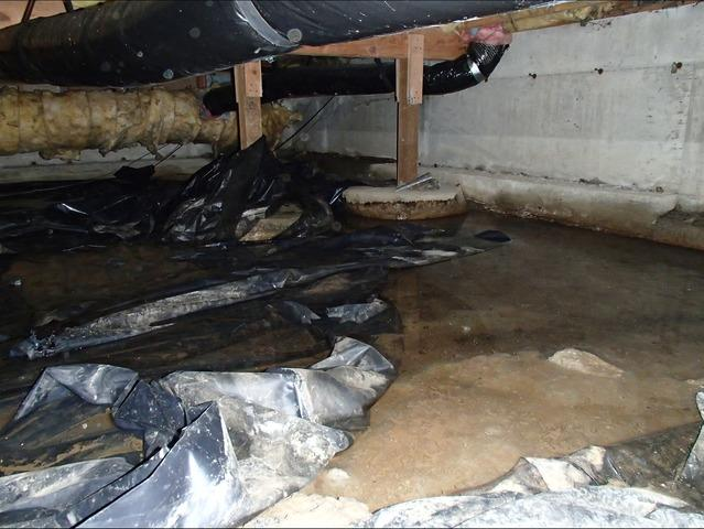 Crawl Space Cleaning in Everett, WA