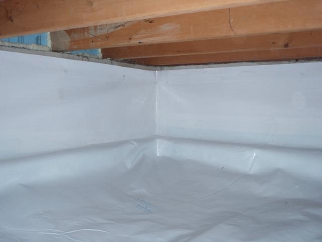Rodent Infested Crawlspace in Sedro-Woolley WA