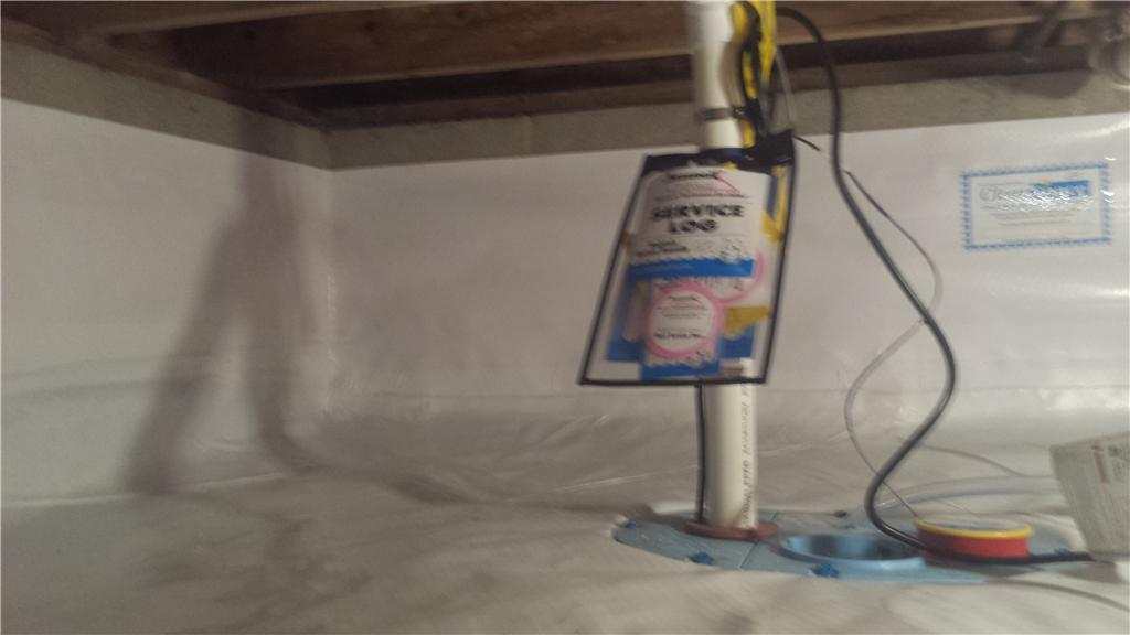 This Very Wet Crawl Space gets the Team DryZone Treatment - After Photo