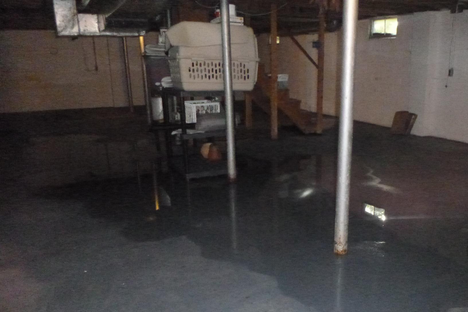 Dry Basement in Stevensville - Before Photo
