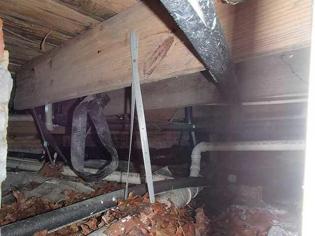 Crawl Space in Linkwood, MD
