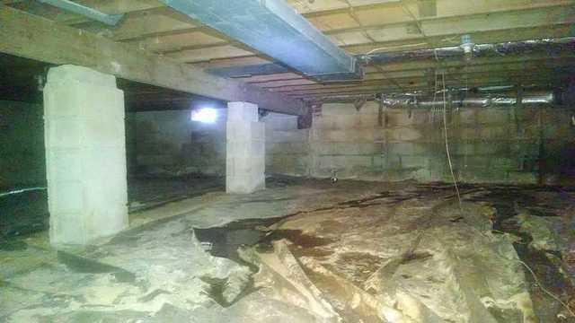 Queenstown Crawl Space