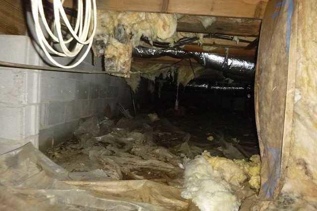 Crawl Space Encapsulation in Colora, MD