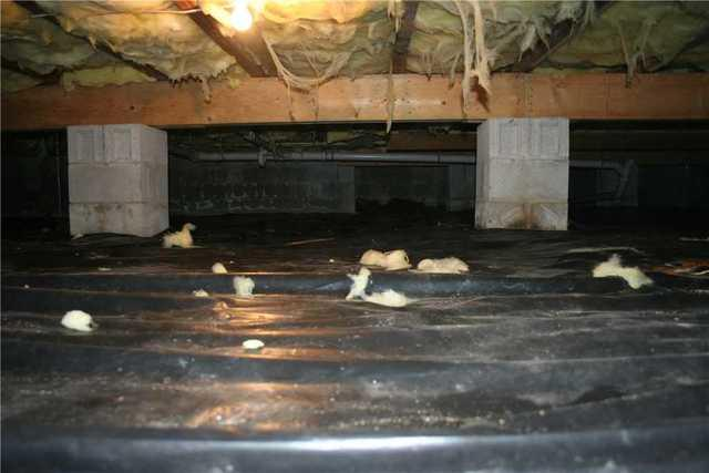 Goldsboro, MD Crawl Space Encapsulation