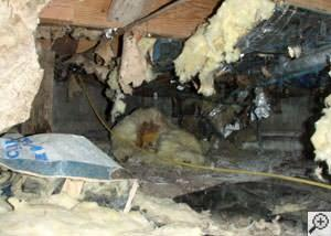 Crawl Space Troubles Are Gone in Claymont, DE