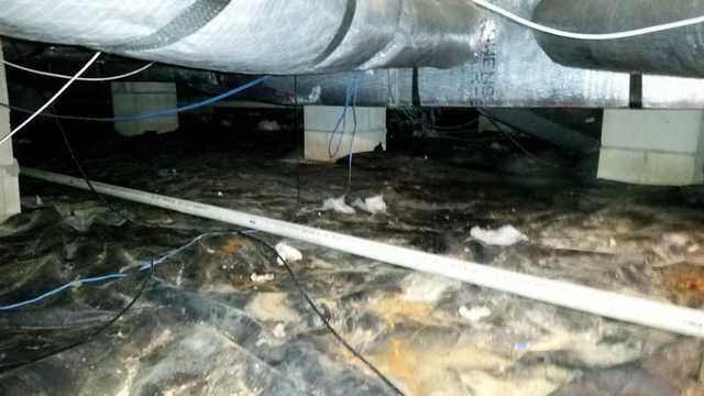 Royal Oak, MD Crawl Space