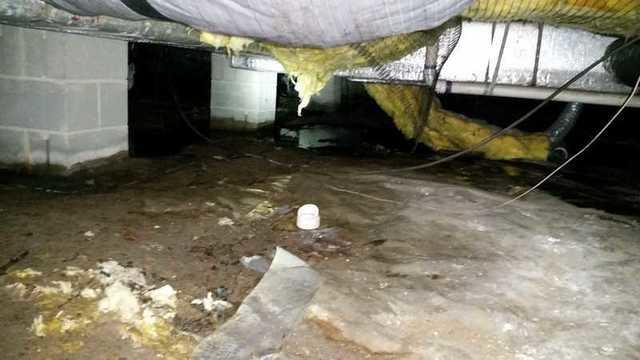 Pocomoke City, MD Crawl Space