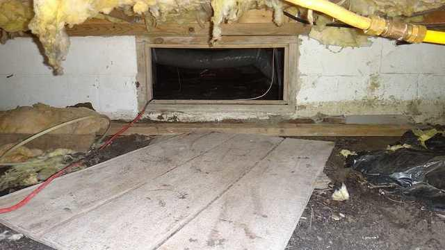 Crawl Space Installation in Deal Island, MD Done Expertly by DryZone