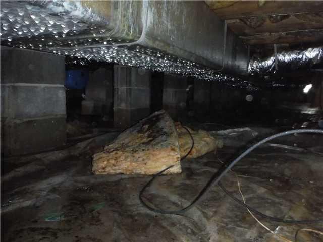Wet and Humid Crawl Space in Georgetown, DE is Transformed by DryZone