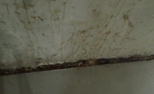 Repairing a Leaky Basement in Baltimore, MD - Before Photo