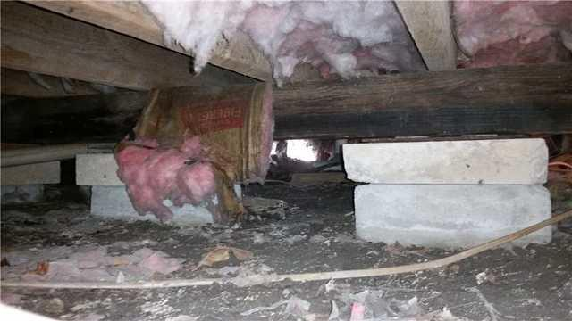 Sudlersville, MD Crawl Space
