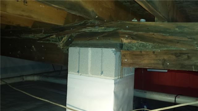 Elkton, MD Crawl Space Encapsulation