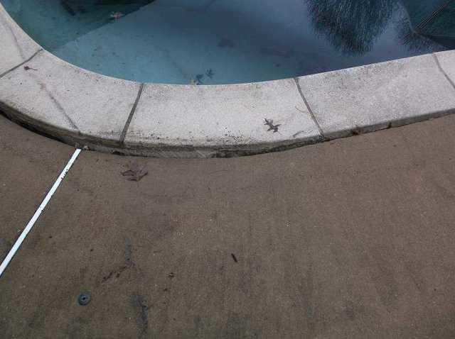 PolyLevel Pool