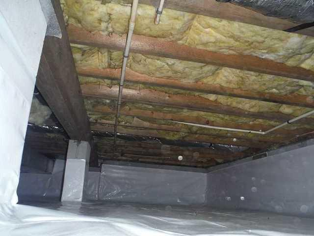 Clean and Dry Crawl Space Transformation