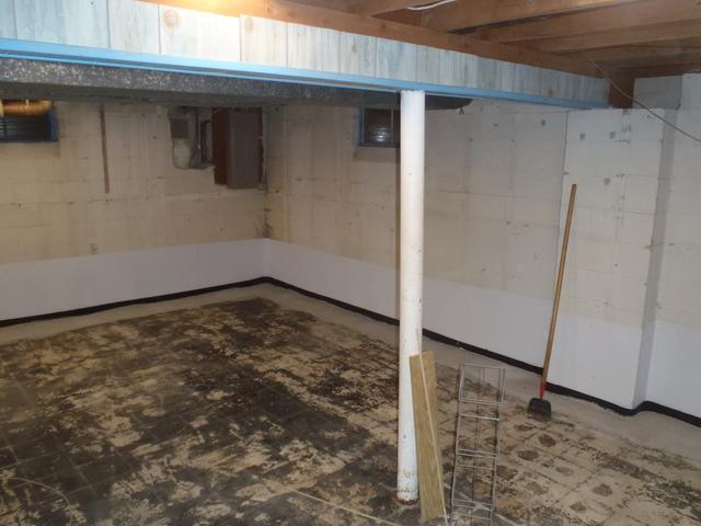Newark, DE basement finishing transformation