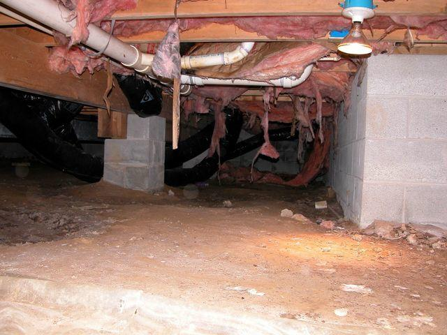 Crawl Space in Selbyville, Delaware