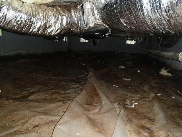 Wet Crawl Space in Marion Station, MD