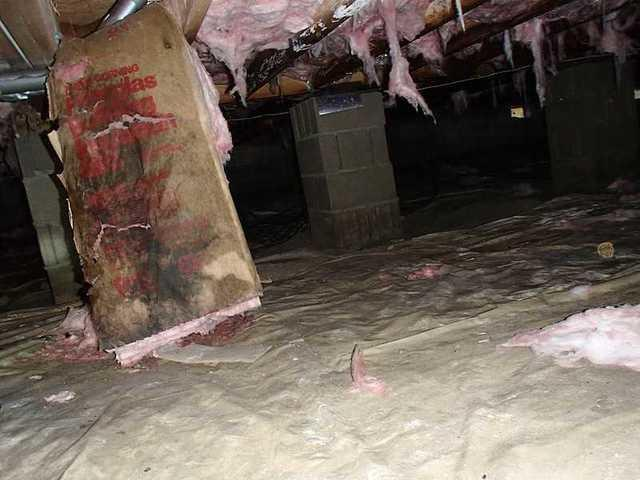 Perry Point, MD Crawl Space Encapsulation