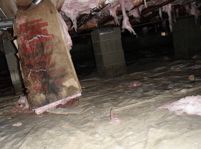 Crawl Space in Westover, MD