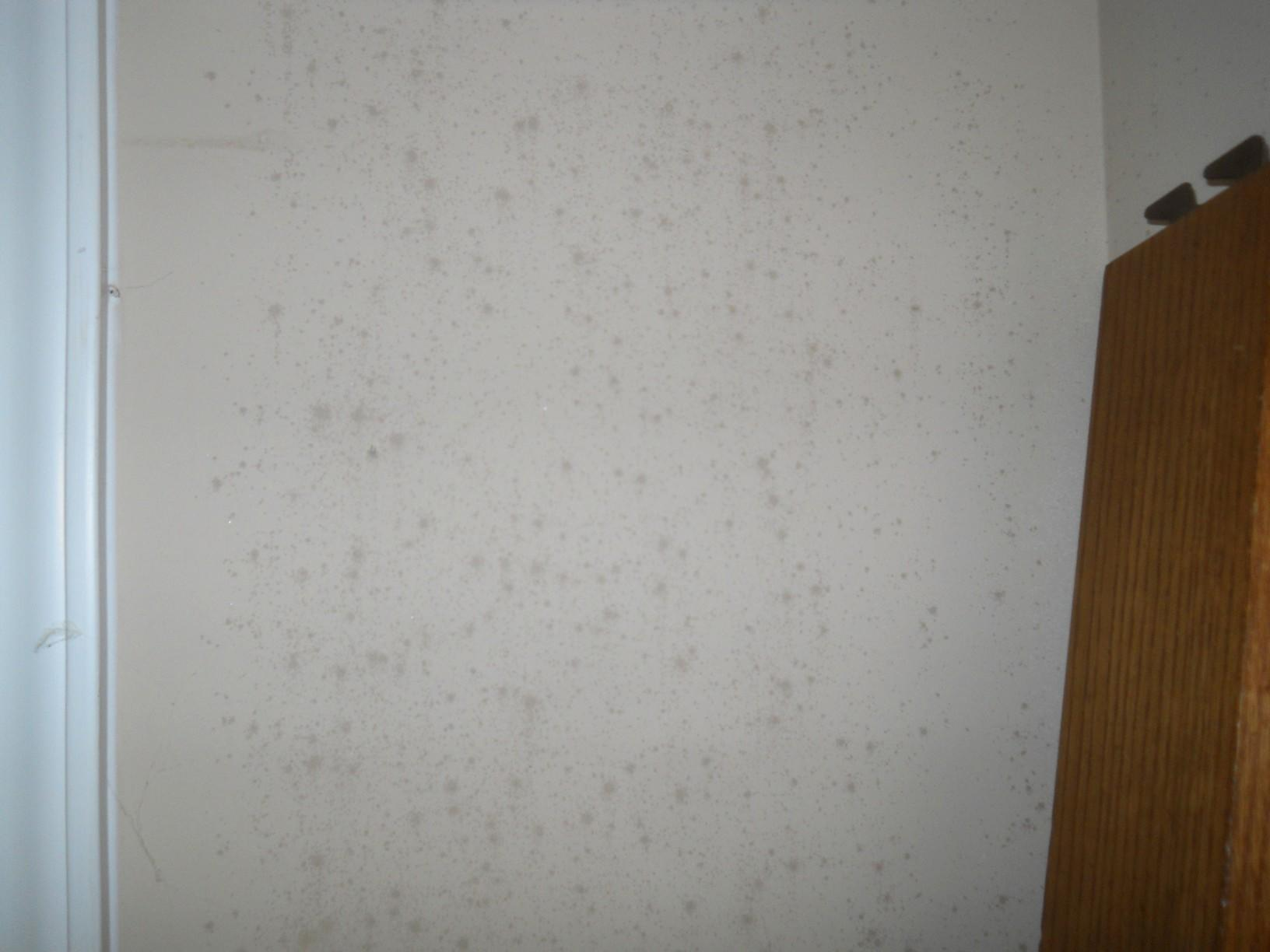 Eliminating Moisture in Fredonia, KY - Before Photo