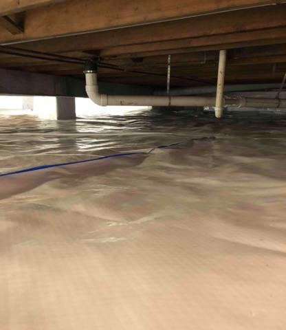 Damp, Moldy Crawl Space in Evansville, IN