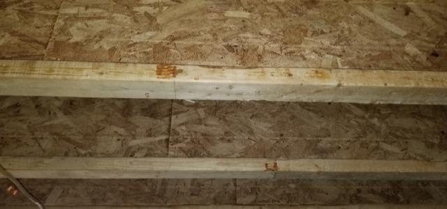 Mold and Moisture Living in Crofton, KY Crawl Space