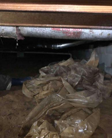 Maeco, KY Crawl Space with Mold and Moisture