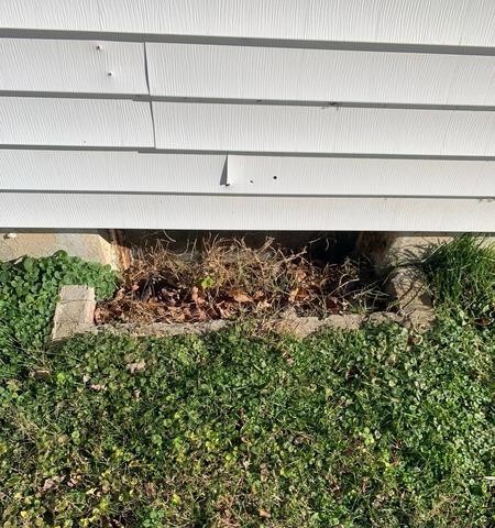 Leaking Windows in Calhoun, KY
