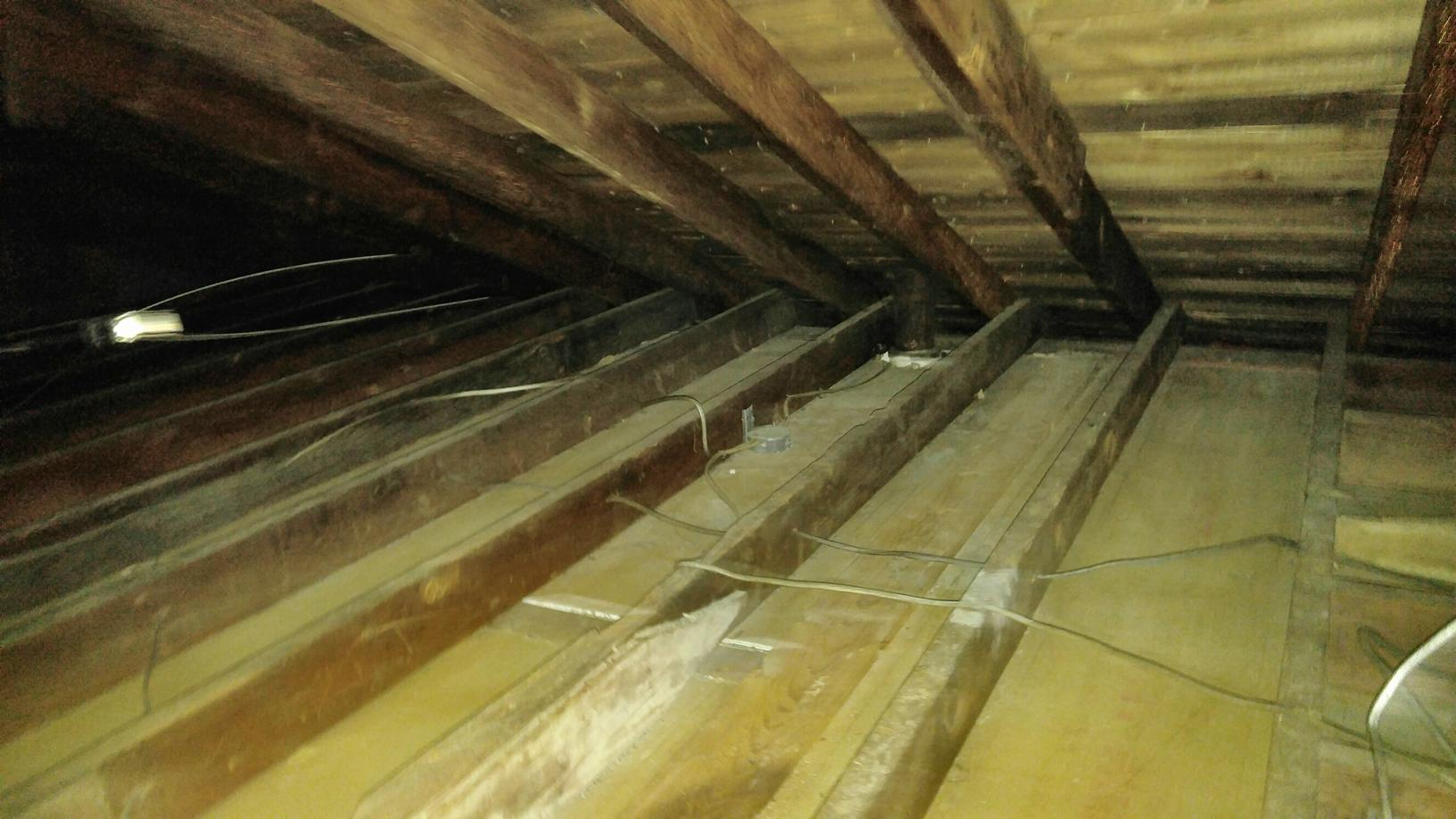 Raccoons wreak havoc in New Egypt attic - After Photo